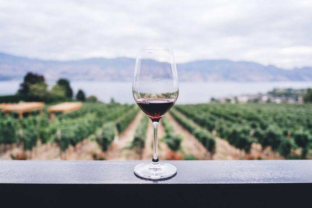 vin beaune